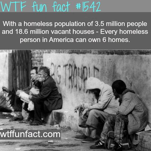 How many homeless people in U.S. -wtf fun facts