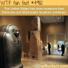 how many museums in the usa wtf fun facts