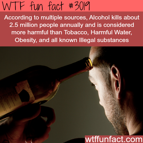 How many people Alcohol kills every year -  WTF fun facts