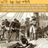 how many slaves came to the us wtf fun fact