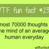 how many thoughts hit the mind each day