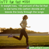 how most of the fat leaves the body wtf fun
