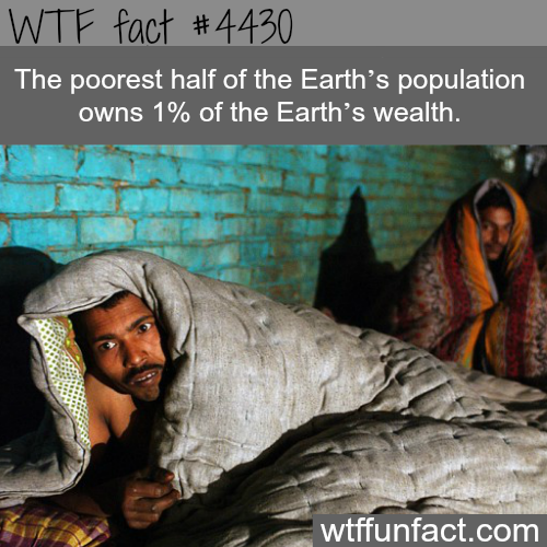 How much does the poorest half of the world's population owns? -   WTF fun facts