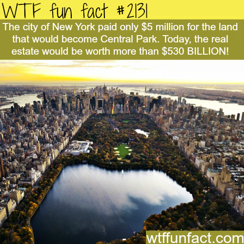 How much is Central Park Worth? -WTF fun facts