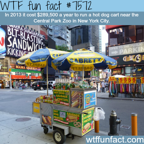 How much it cost to run a hot dog car in NYC? - WTF fun facts