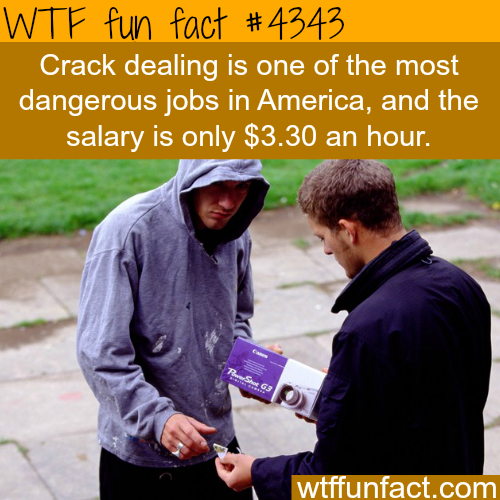 How much money does a crack dealer make -  WTF fun facts