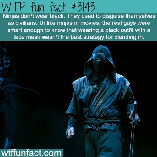 How ninjas actually looked like -  WTF fun facts