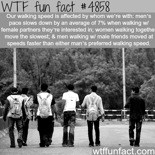 How our walking speed is determined - WTF fun facts