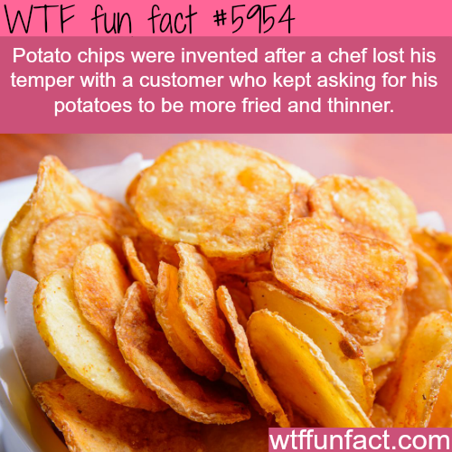 How potato chips were invented - WTF fun facts