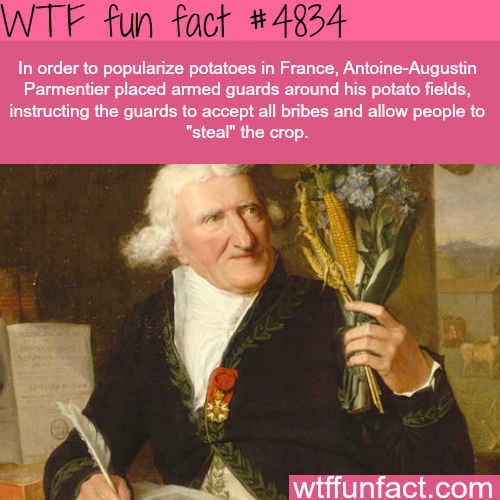 How potatoes was popularized in France - WTF fun facts