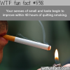how quitting smoking can improve your body in days
