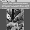 how rationing helped improve the life expectancy