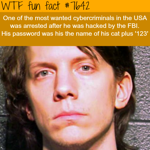 How the FBI hacked the most wanted hacker - WTF FUN FACTS