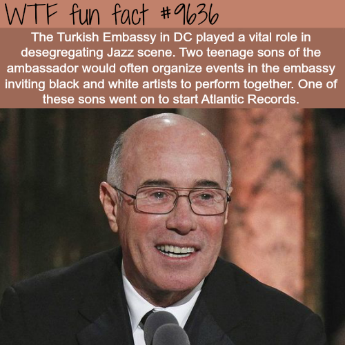 How the Turkish Embassy helped with desegregation - WTF fun fact