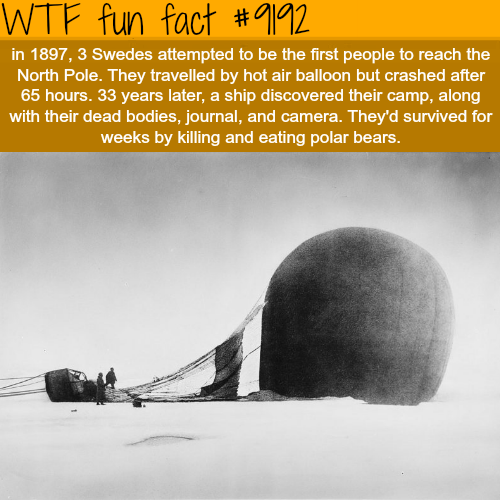 How Three Swedes Attempted to reach the North Pole - WTF Fun Facts