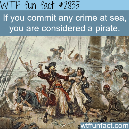 How to become a pirate -  WTF fun facts