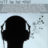 how to become more productive wtf fun facts