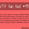 how to calm yourself down wtf fun facts
