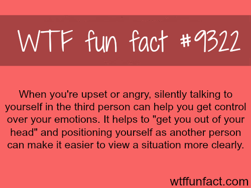 How to calm yourself down - WTF fun facts