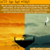 how to control your dreams wtf fun facts