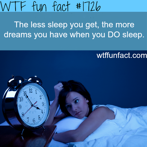How to dream -WTF fun facts