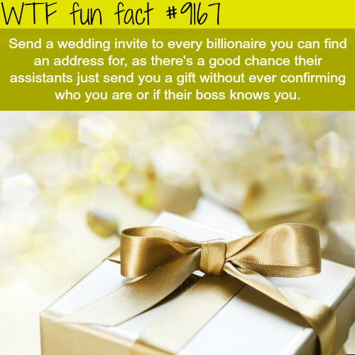 How to get gifts for your wedding - WTF Fun Facts