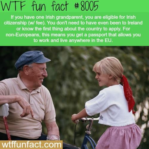 How to get Irish citizenship - WTF fun fact