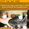 how to get rid of unpleasant odor in shoes
