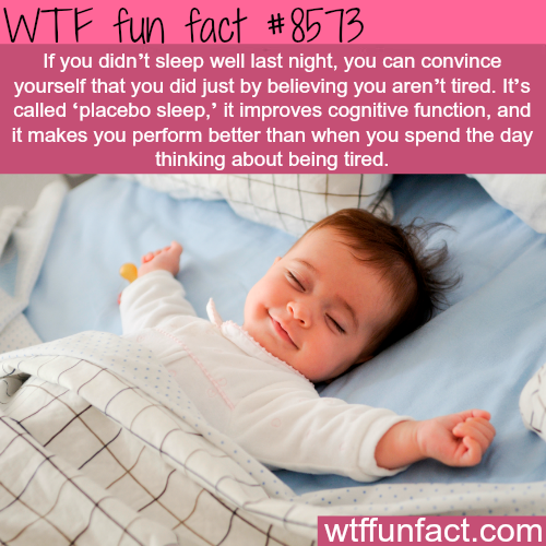 How to have energy even without enough sleep - WTF fun facts