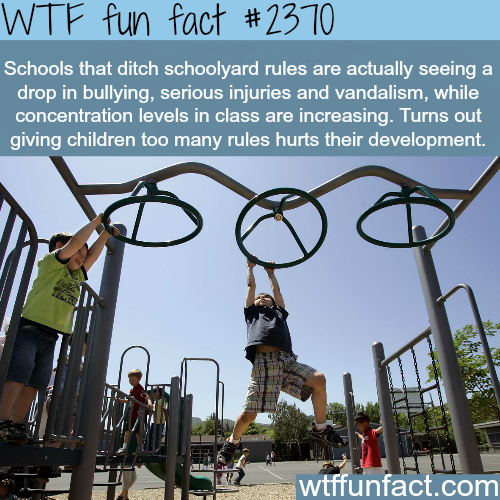 How to improve students performance -WTF funfacts