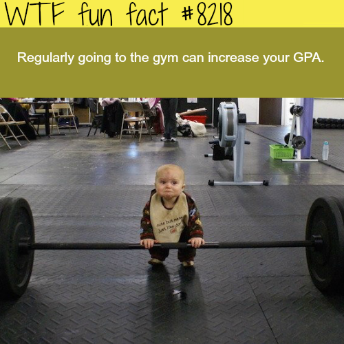 How to increase your GPA - WTF fun facts