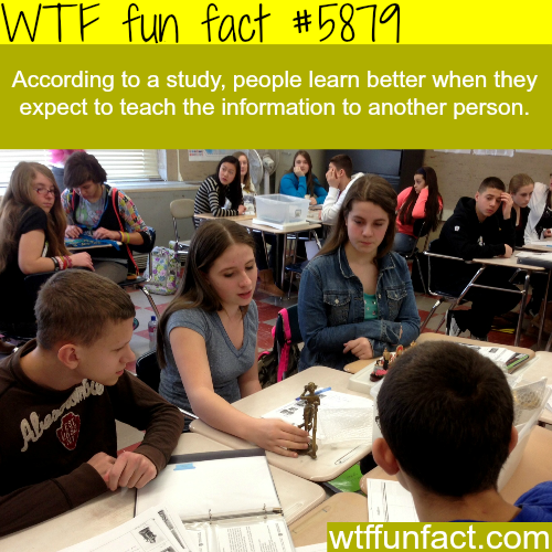 How to learn better - WTF fun facts
