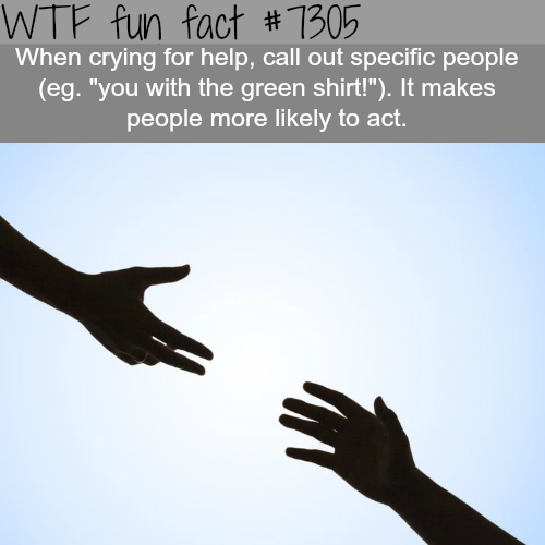 How to make people help you when you need help - WTF fun fact