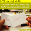 how to study in for a test wtf fun fact