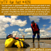 how to survive sinking in a quicksand wtf fun