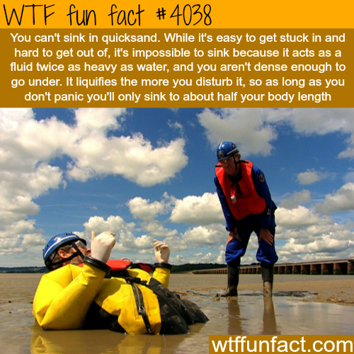 How to survive sinking in a quicksand - WTF fun facts