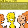 how to understand peoples personalities wtf fun