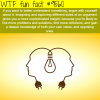 how to understand something better wtf fun fact
