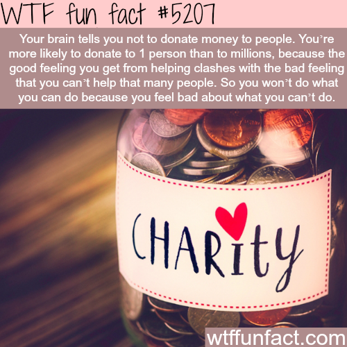 How your brain feels about donations - WTF fun facts