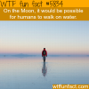 humans can walk on water on the moon wtf fun