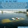 hurricane katrina wtf fun fact