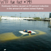 hurricane katrina wtf fun facts