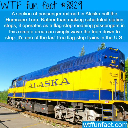 Hurricane Turn - WTF fun facts