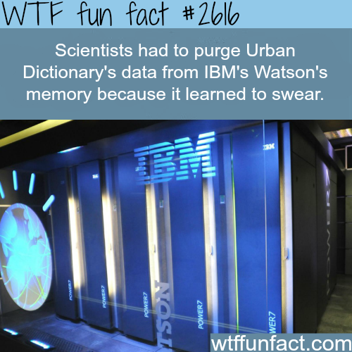 IBM's Watson's Learning how to swear - WTF fun facts