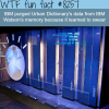 ibm watson wtf fun facts