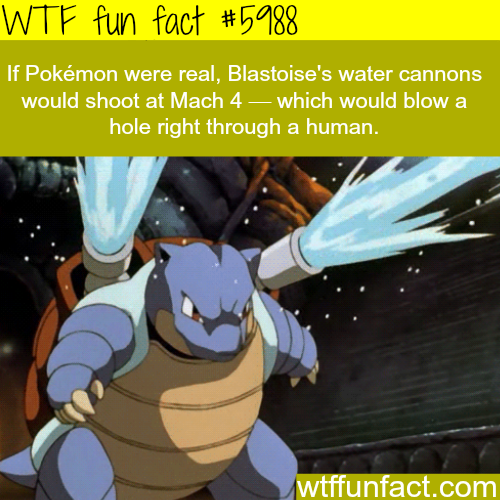 If Pokemon were real - WTF fun facts