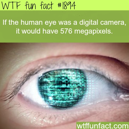 If the human eye was a digital camera - WTF fun facts