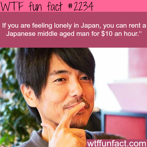 If you are feeling lonely in japan - WTF fun facts