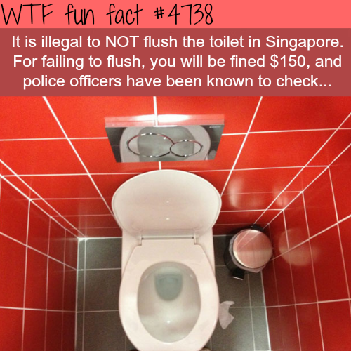 Illegal things not to do in Singapore - WTF fun facts