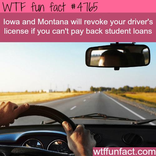 Iowa and Montana - WTF fun facts